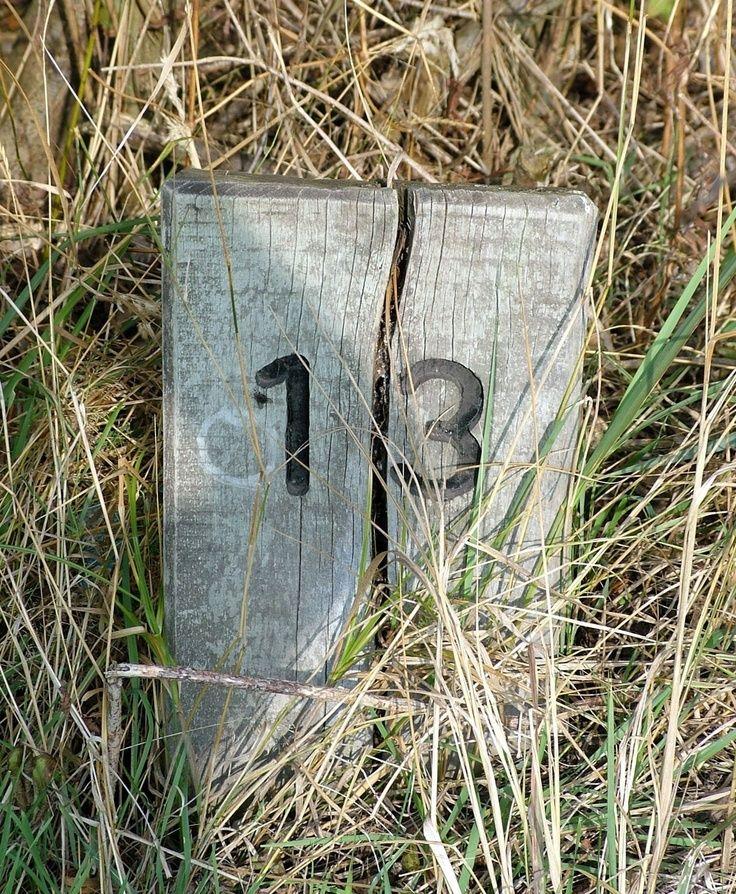 13 (What is this?) Extraña cita. ¿O numero? Pase lo que pase a esa hora uno debe recurrir a las supersticiones inversas. Una pata de conejo, un recuerdo positivo, o alguna otra enseñanza de la abu... Editar