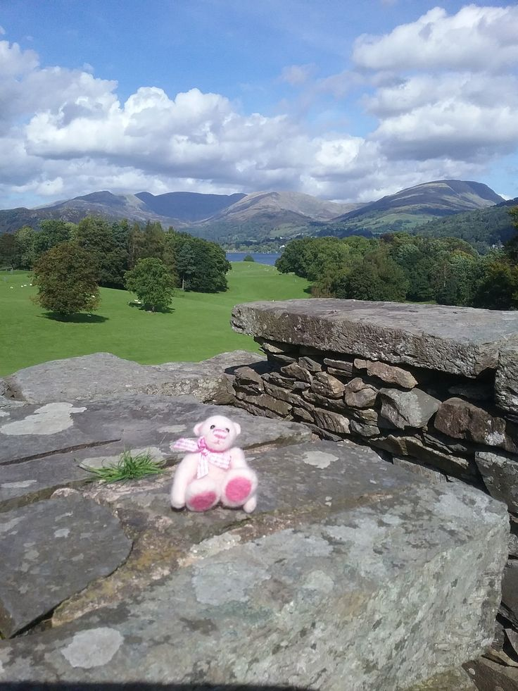 This is Rosie having a lovely day out in the Lake District.