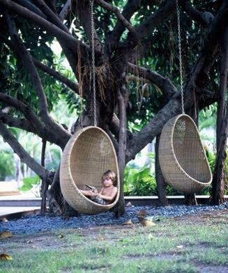 Wicker Swing Chairs Hanging From A Tree Hammocks Amp Swing
