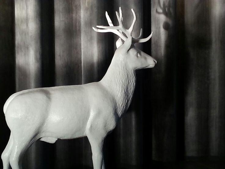 Ooo Deer
