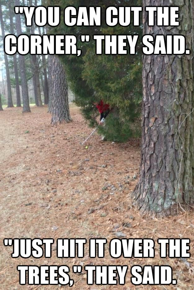 """""""You can cut the corner,"""" they said, """"Just hit it over the trees."""" They said."""