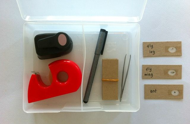 DIY Microscope Slide Kit - for a five year old from How We Montessori