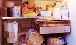 "5 Reasons to Buy a Freezerless Refrigerator"""