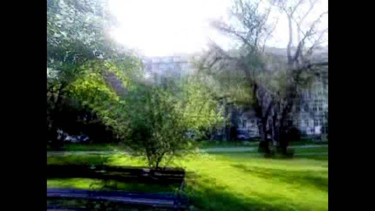 Marek Dusil Blend -Máj v Sherwoodu (May in Sherwood) (official mobil video)