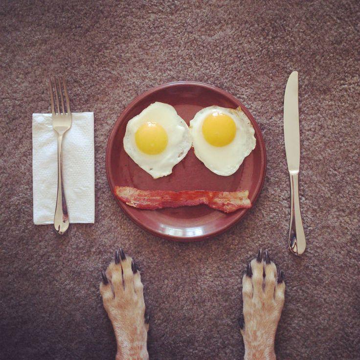 http://www.saatchiart.com/art/Photography-Breakfast/369516/223707/view