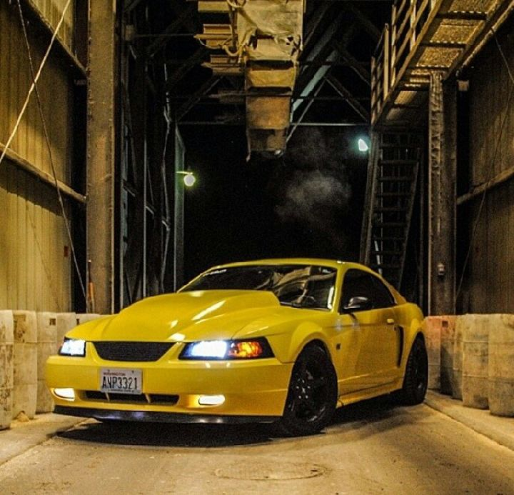 Supercharged Mustang Yellow: Very Sick Yellow Mustang GT In Industrial Washington