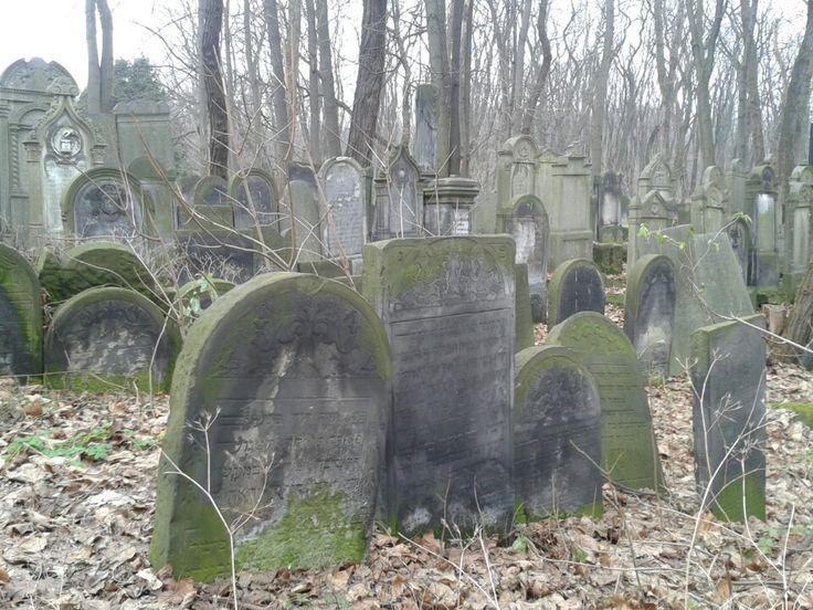 Cmentarz Żydowski / Jewish Cemetery in Warszawa, Województwo mazowieckie