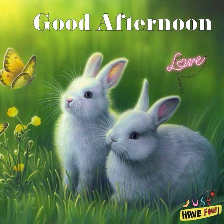 9429 Best Good Morning Images On Pinterest