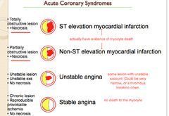 Acute Coronary Syndromes and Atypical Angina.