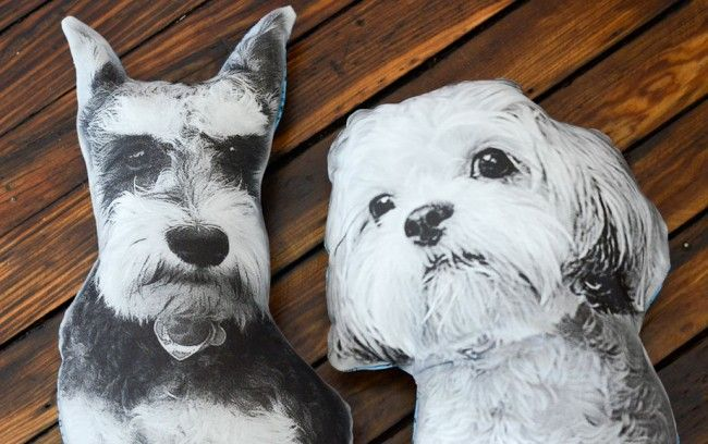 how to make pillows that look like your dog, cat or even poo. Seriously cute with instructions http://post.barkbox.com/diy-dog-pillows/