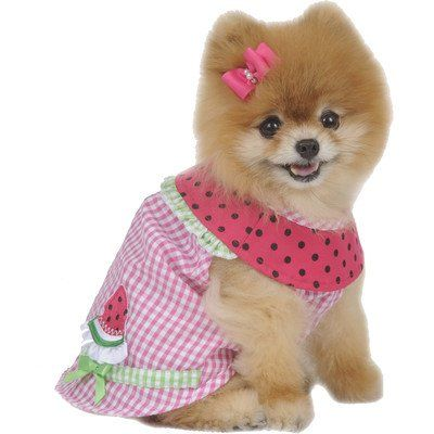 Maxs Closet Checked Watermelon Dog Dress XSmall    Check Out The Image By  Visiting The