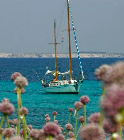 May in Sardinia Hiking & Sailing, the sustainable way to visit the Marine Protected Area of Sinis Mal Ventre, west Sardinia!  From May 1st, discover the programm: reservations@sardeo.com