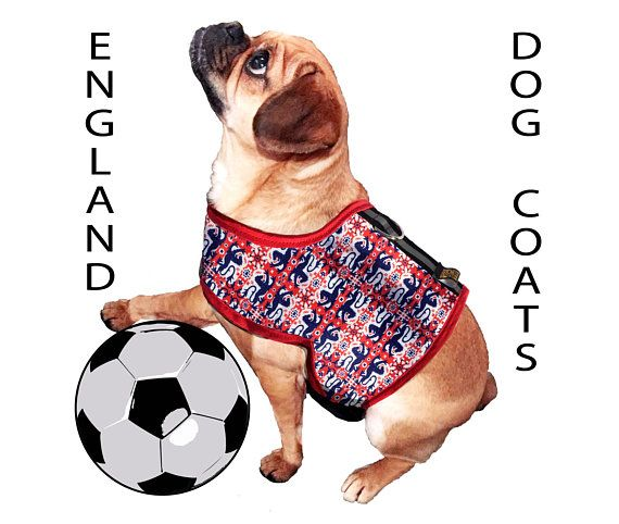 England Dog Coat Union Jack Harness Dog Coats Pet Gifts Pets