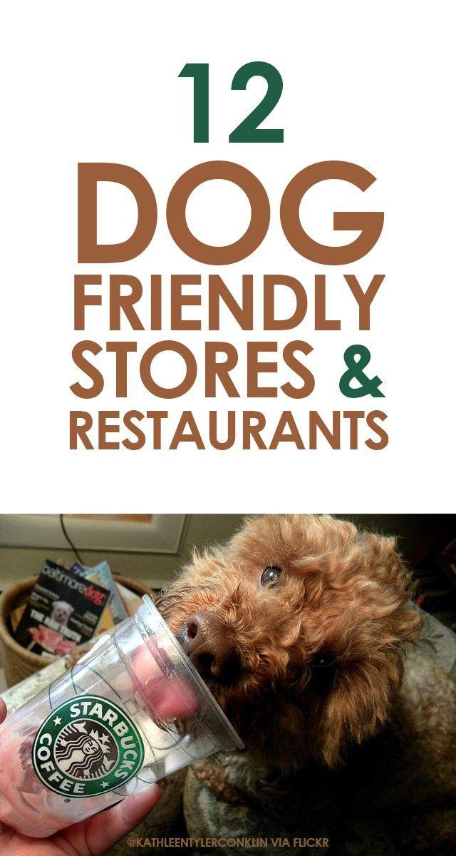 12 Dog Friendly Stores & Restaurants http://iheartdogs.com/12-dog-friendly-stores-and-restaurants/