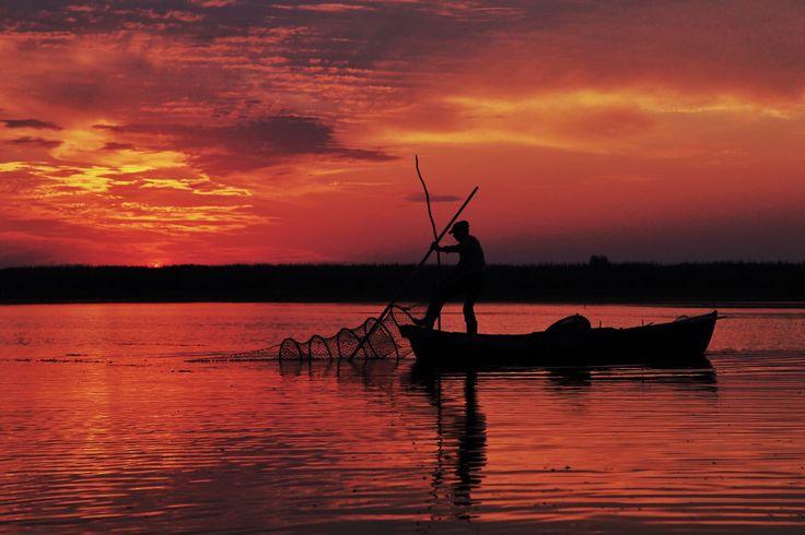 Sunrise, Danube by ~catalina f.~ / 500px