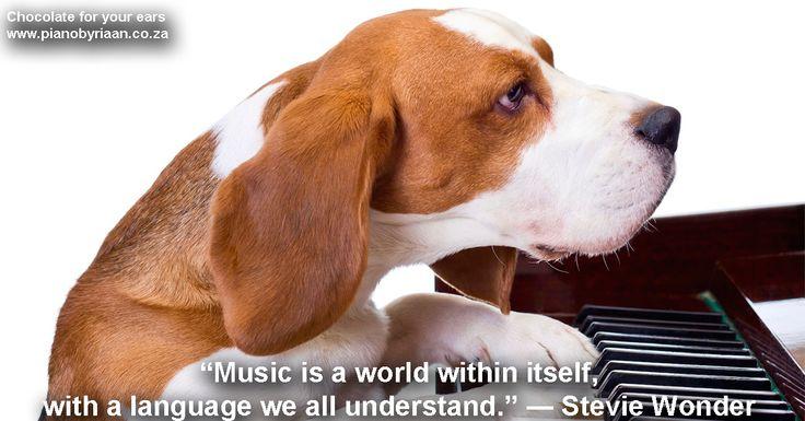 Musieklesse in die Ooste. Klavier, Kitaar, Viool, Sang, Dromme, Baskitaar. Kontakinligting: 082 806 0626 of riaan@learnmusic.co.za.http://www.learnmusic.co.za Facebook bladsy: https://www.facebook.com/riaaneloffmusicacademy Hier is 'n video oor musiekante se breinfunksie, wat jou asem dalk net sal wegvat: http://www.learnmusic.co.za/#Video  #LearnMusic #RiaanEloff #MusicAcademy #MusicSchool #MusicLessons