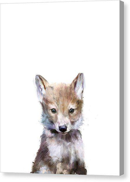 Little Wolf Canvas Print – Jane Rankin Samardzija