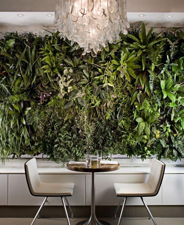 Un Mur végétal dans un restaurant! A Green wall in a restaurant #verticalgarden #greenwall #murvegetal