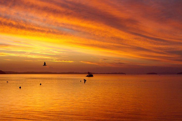 TWILIGHT AT HALIFAX BEACH. Love the colour. #sunsets