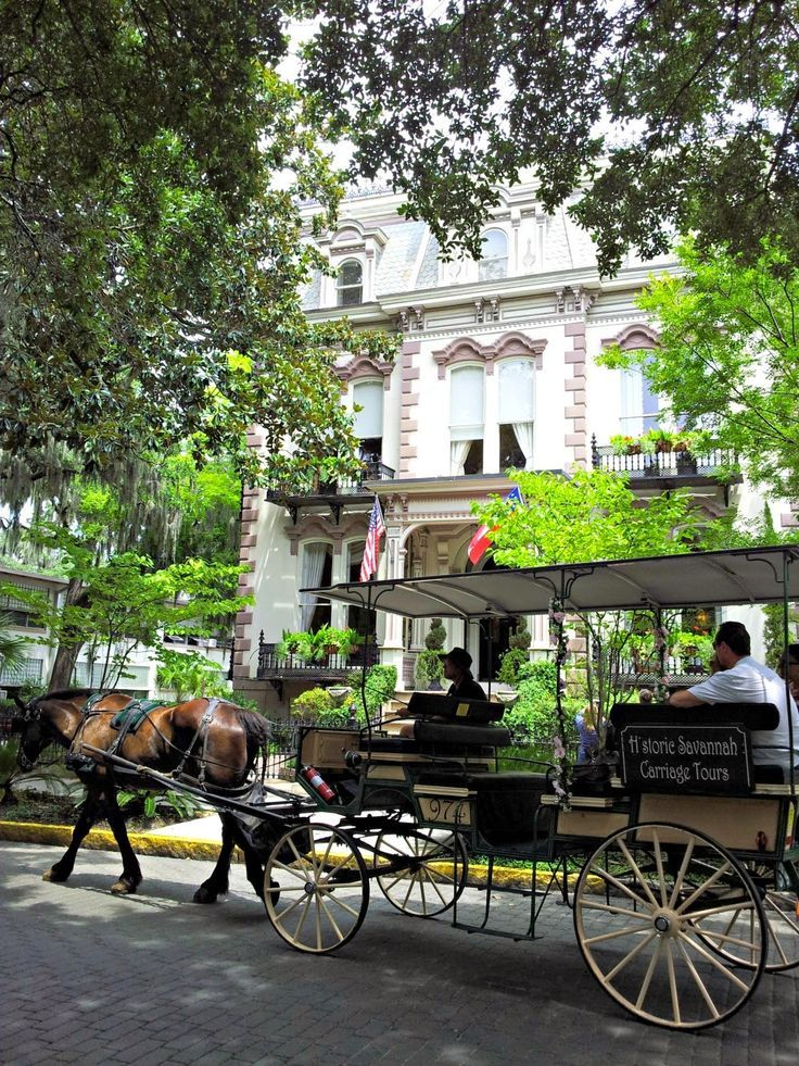 Historic Savannah carriage tour. Great with the kids! Tips from Leigh Powell Hines