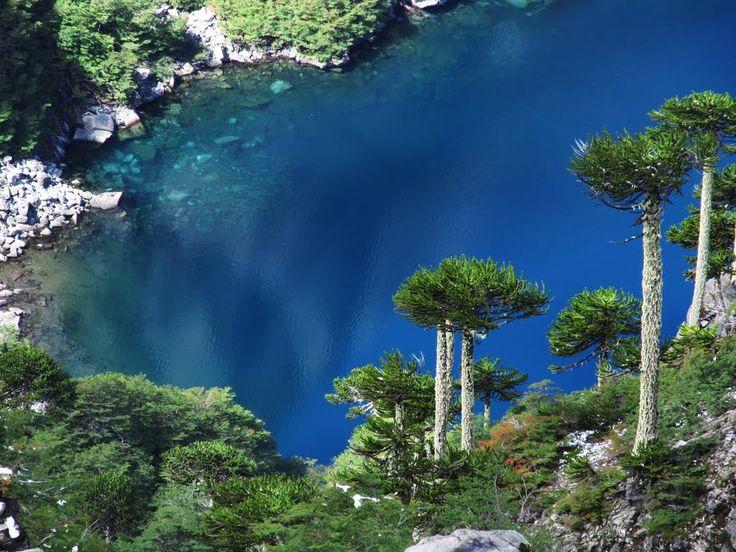 """""""Laguna San Manuel"""" Huerquehue, Parque Nacional,  Pucón, Región de la Araucanía, Chile"""