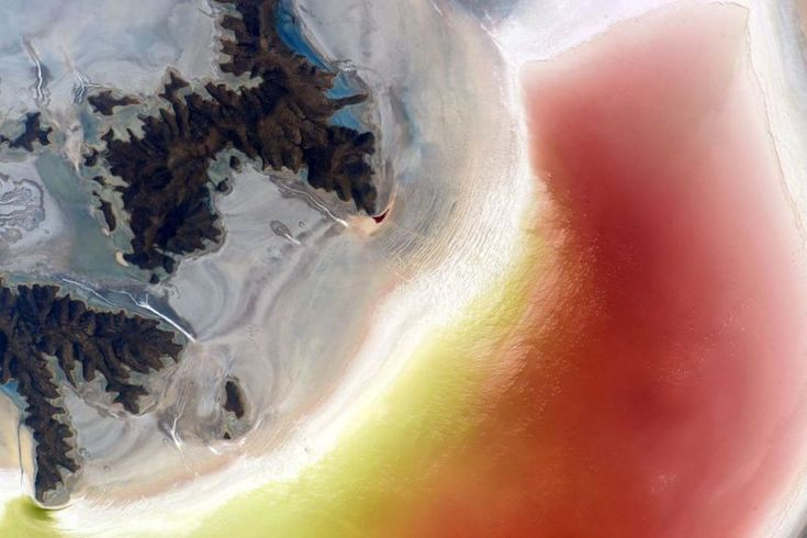 July 6, 2015: As brine evaporates, it leaves behind distinctive rings of evaporite minerals like halite, borax, gypsum, and sylvite. Image credit: NASA/Scott Kelly