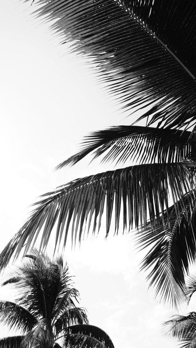 Palm Leaf Print, Watercolor Palm Leaves, Tropical Leaf