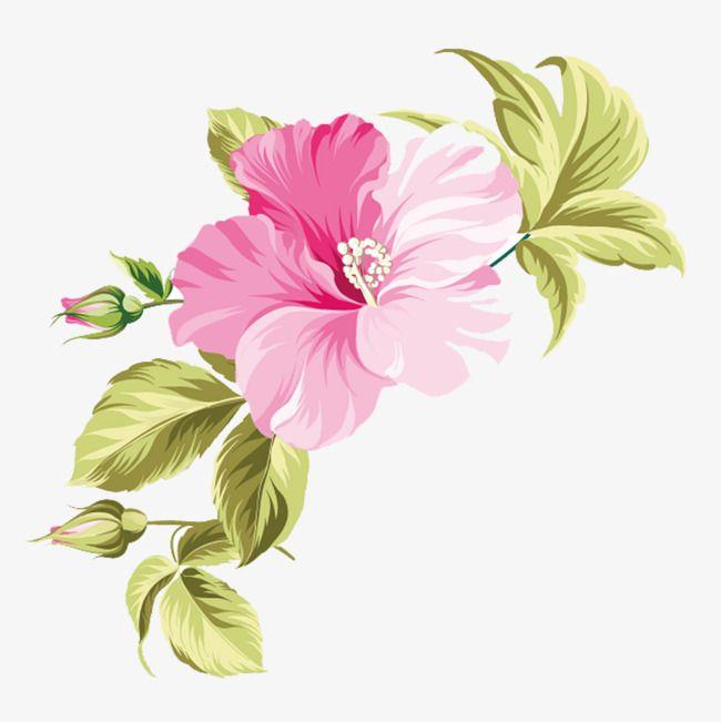 Hawaii Flores Pintadas A Mano Hawaii Tropic Mano Png Y Vector Girasol En Acuarela Flores Vectorizadas Flores Pintadas
