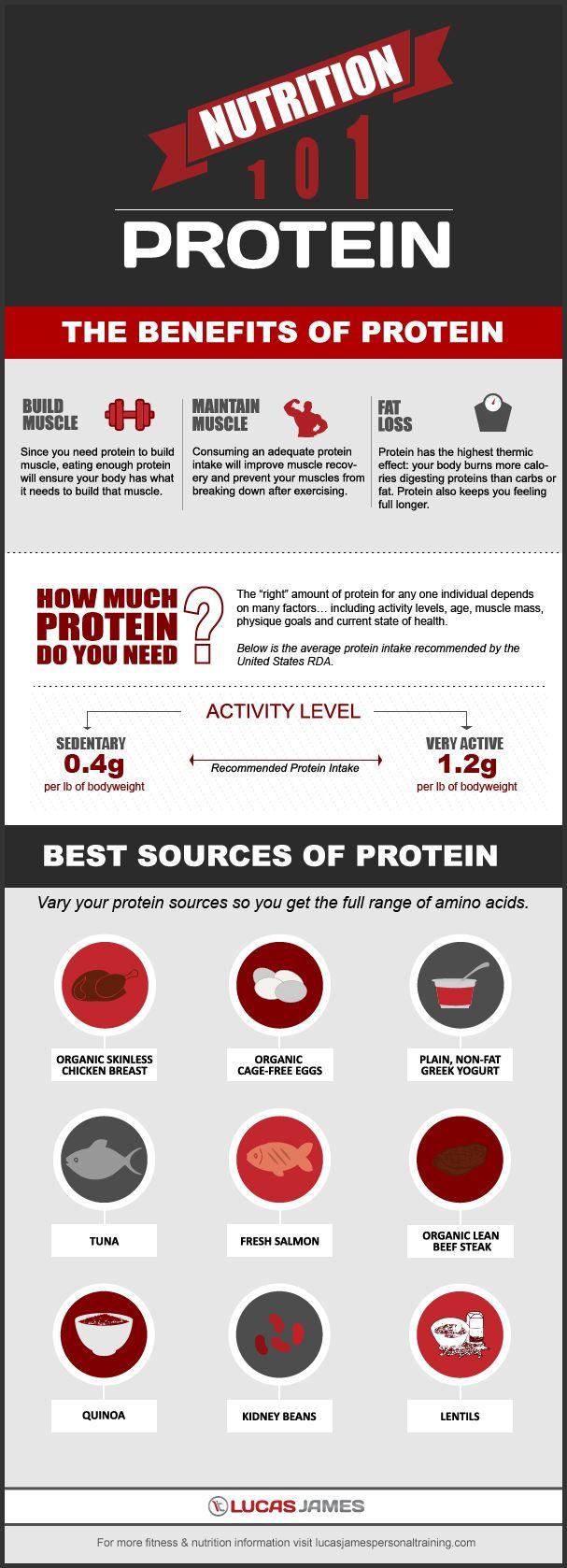 Nutrition 101: Protein | Health | Fitness |Workout | Diet | Weightloss | Lucas James Celebrity Trainer | Scottsdale | Arizona