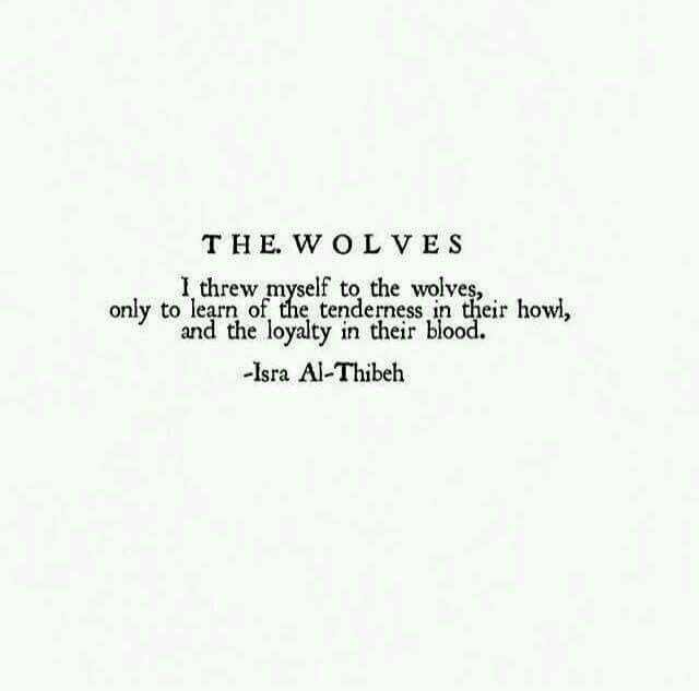 The Wolves - Isra Al-Thibeh