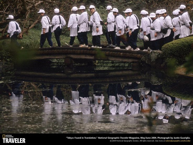 National Geographic bilder - gratis skrivbordsunderlägg: http://wallpapic.se/national-geographic-bilder/uncategorized/wallpaper-38528