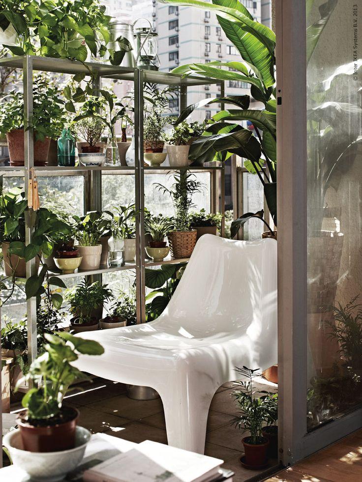Balcony plant ideas vertical garden aquaponics system for Indoor gardening reddit