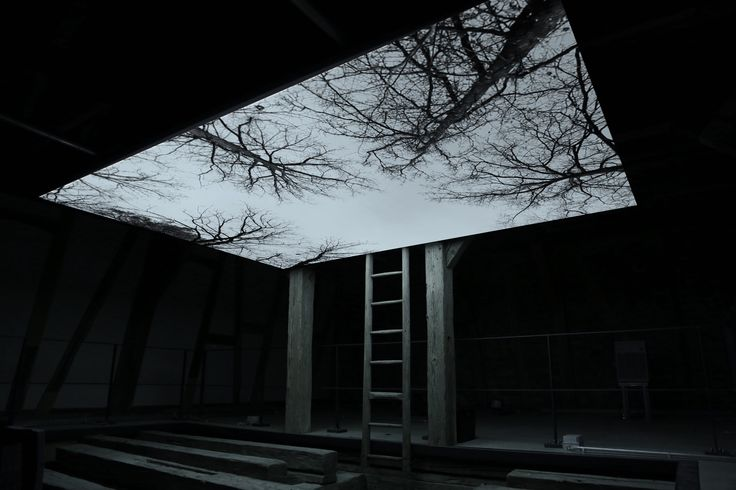 Youki Hirakawa - Vanished Tree - Barn / 2013.  Video Installation / 1 Projection and 1 Monitor / Silent / Full HD / 10min Loop. Akademie Schloss Solitude, Stuttgart