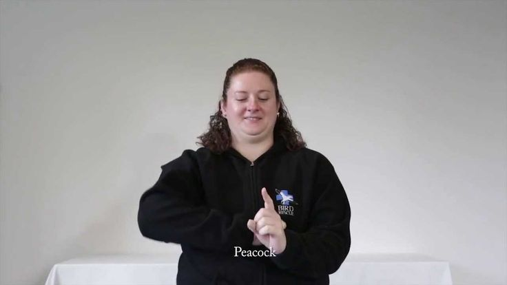 Sign Language Week: Day-3 (Wednesday)