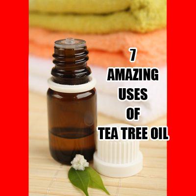 7 Amazing Uses of Tea Tree Oil