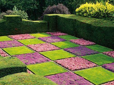 Checkerboard yard landscaping ideas pinterest for Checkerboard garden designs
