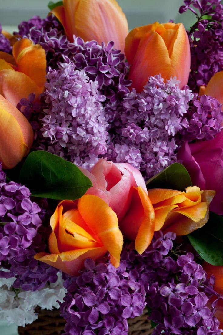 best flowers images on pinterest flower arrangements floral