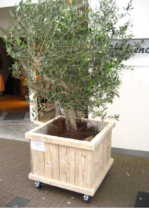 http://www.rvdzalm.nl/pictures/sh-plantenbakken2.jpg