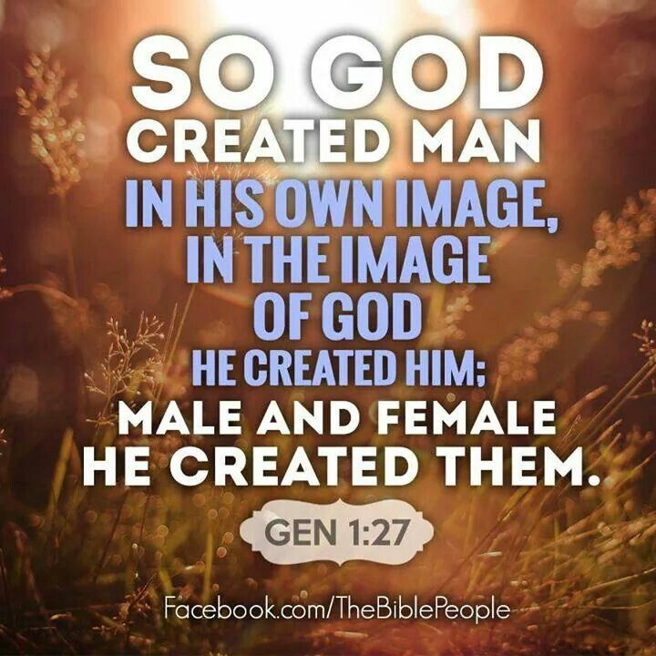 the glory of god and the creation of humans in his image So god created man in his own image, in the image of god he created him male and female he created them 1  the stated content of the image is again glory—the glory of god through christ  since paul views the image of god as a present possession common to man by virtue of creation, the image of god which man newly attains in.
