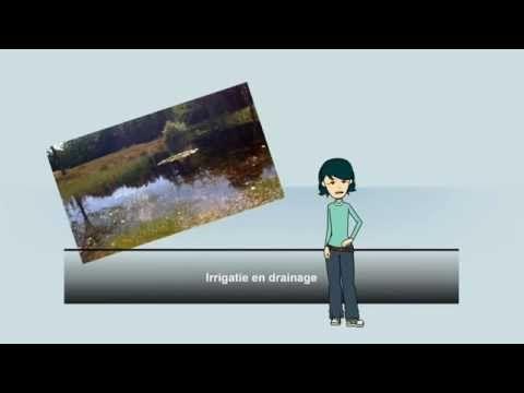 Lesopdracht 4 VMBO vragen over irrigatie en drainage