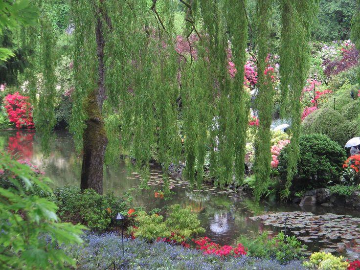 Beautiful Gardens in Vancouver Island