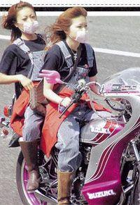 Bosozoku japanese biker gangs and bosozoku style