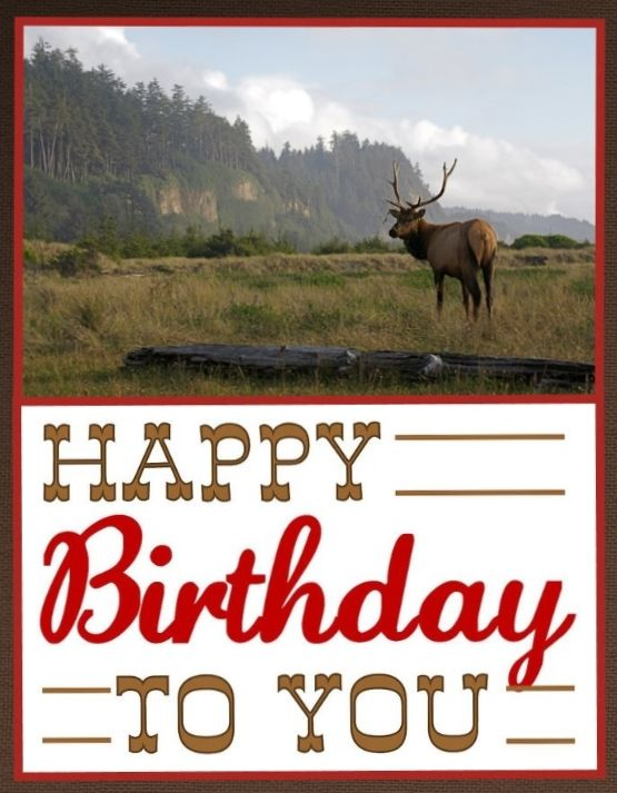 Western Happy Birthday - cowboy - mountains - deer - man birthday. Custom Collage Birthday card - none like it! by Shelley