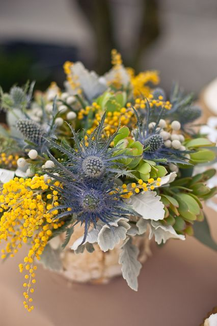 Yellow & gray floral centerpiece: blue thistle, yellow solidago, green protea, gray lambs ear ...