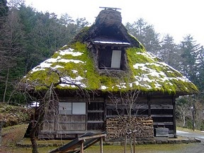 Thatched roof with moss and snow