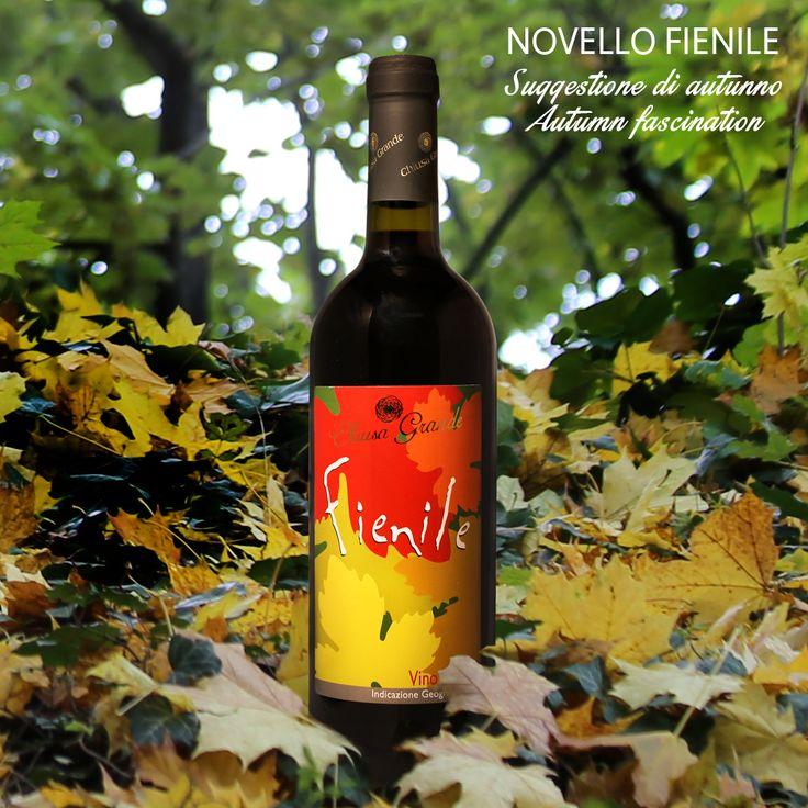 NOVELLO FIENILE #novello #organicwine #abruzzo #italy #chiusagrande #nocciano #pescara #vino