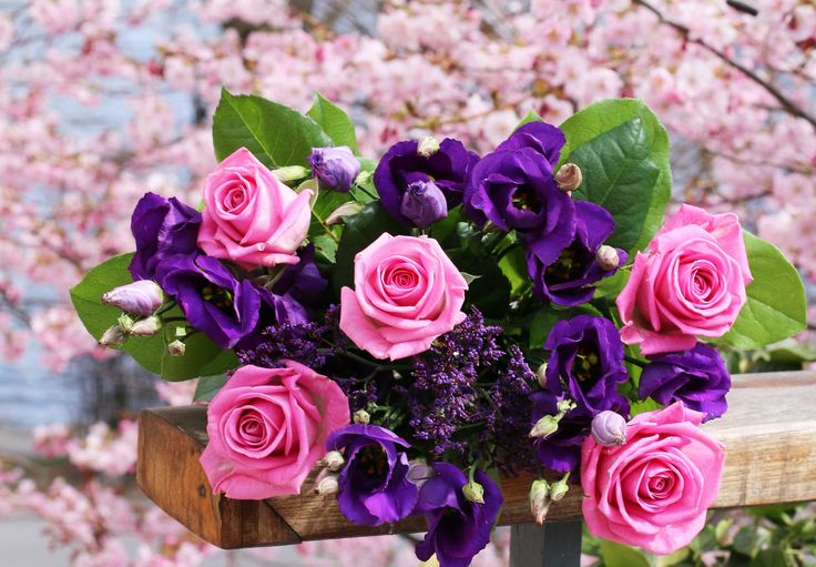 En rosalila blomsterdröm.