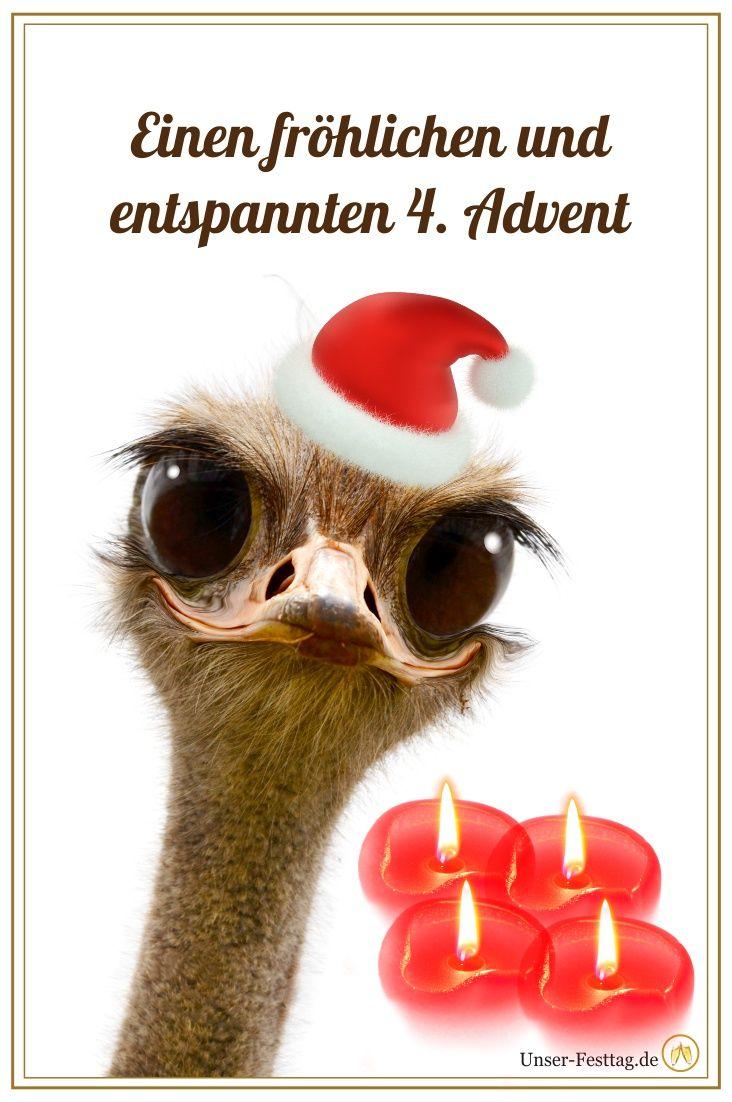 Lustiges Whatsapp Bild Fur Den 4 Advent Zum Verschicken Endlich Mal Was Anderes Weihnachten Advent Advent Lustig Zweiter Advent Advent