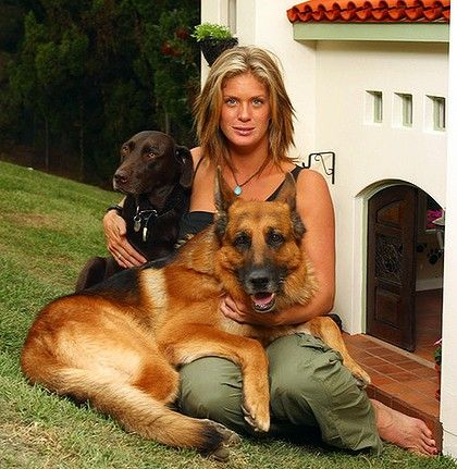 Celebrity GSD - Rachel Hunter and her dogs