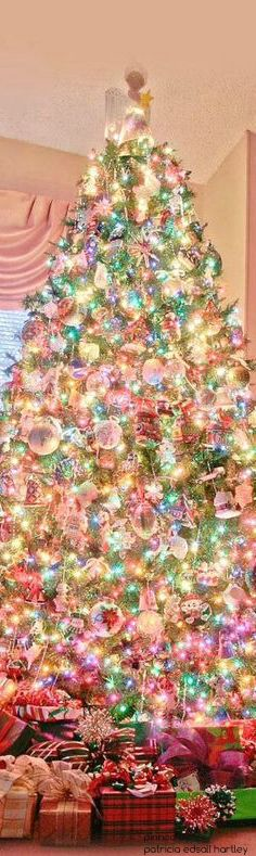2696 best Christmas Trees images on Pinterest | Christmas trees ...